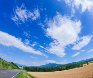 北海道 自然 風景 田園風景を走る一本道と青空 の写真素材 [FYI03829444]