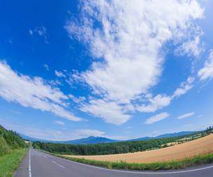 北海道 自然 風景 田園風景を走る一本道と青空 の写真素材 [FYI03829445]