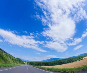 北海道 自然 風景 田園風景を走る一本道と青空 の写真素材 [FYI03829446]