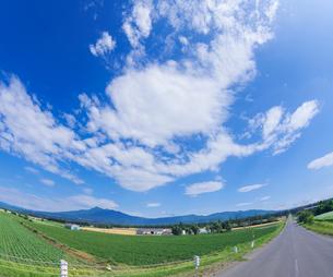 北海道 自然 風景 田園風景を走る一本道と青空 の写真素材 [FYI03829448]