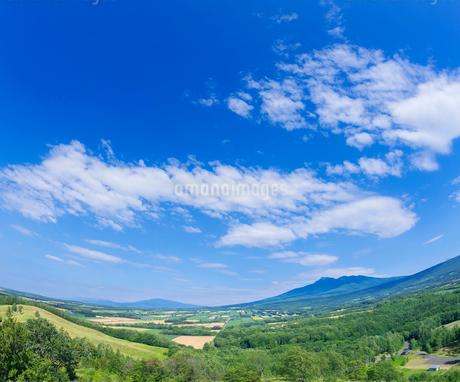 北海道 自然 風景 田園風景と青空 の写真素材 [FYI03829449]