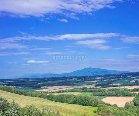 北海道 自然 風景 田園風景と青空 の写真素材 [FYI03829451]