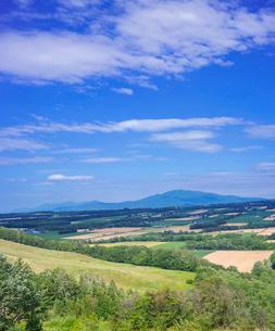 北海道 自然 風景 田園風景と青空 の写真素材 [FYI03829452]