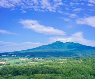 北海道 自然 風景 田園風景と斜里岳遠望の写真素材 [FYI03829454]