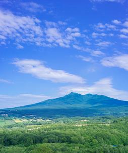 北海道 自然 風景 田園風景と斜里岳遠望の写真素材 [FYI03829455]