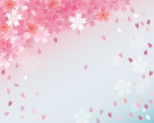 桜 春 背景のイラスト素材 [FYI03829514]