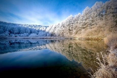 光さす冬の聖高原の写真素材 [FYI03829735]