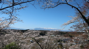 芦野の桜と那須の山々の写真素材 [FYI03829875]