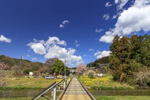 茨城県 地徳橋の写真素材 [FYI03829920]
