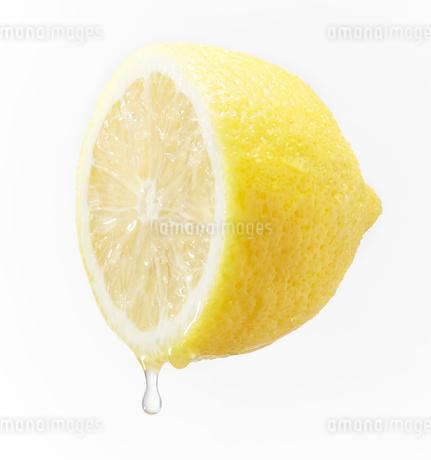 レモン汁が垂れている輪切りのレモンの写真素材 [FYI03830061]
