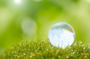 グリーンの上のガラスの地球の写真素材 [FYI03830070]
