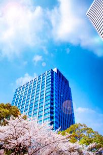 高層ビルと桜の写真素材 [FYI03830273]