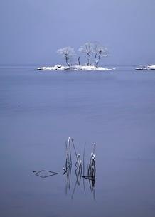 静かなる湖畔の写真素材 [FYI03830286]