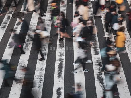 横断歩道を渡る歩行者の様子の写真素材 [FYI03830674]