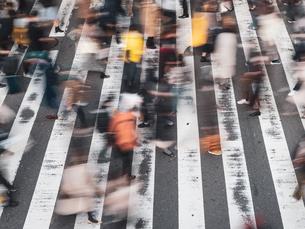 横断歩道を渡る歩行者の様子の写真素材 [FYI03830675]