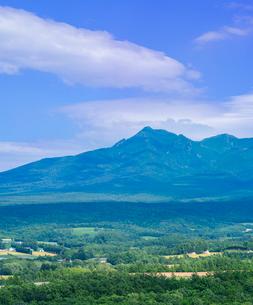 北海道 自然 風景 田園風景と斜里岳遠望の写真素材 [FYI03831150]