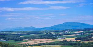 北海道 自然 風景 パノラマ 田園風景と知床連山遠望の写真素材 [FYI03831155]