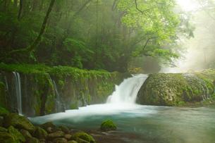 黎明の滝の写真素材 [FYI03831319]