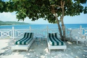 海岸の木陰に置かれた2つのチェアーベッド ジャマイカの写真素材 [FYI03831382]