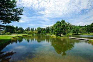 観自在王院跡舞鶴が池の写真素材 [FYI03831493]