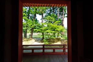 毛越寺本堂からの眺めの写真素材 [FYI03831499]