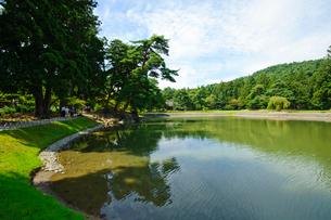毛越寺大泉が池の写真素材 [FYI03831515]