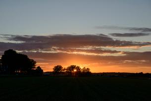農地の夕暮れの写真素材 [FYI03831558]