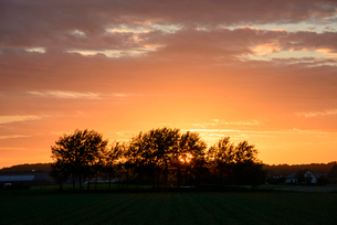 農地の夕暮れの写真素材 [FYI03831559]