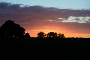農地の夕暮れの写真素材 [FYI03831561]