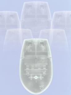 スケルトンマウスの写真素材 [FYI03831763]