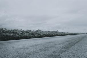 道 BWの写真素材 [FYI03831792]