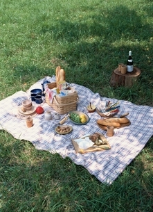 芝生上のピクニックシートのワインと食べ物の写真素材 [FYI03831825]