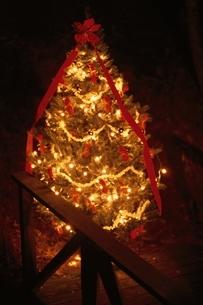 部屋のライトアップしたクリスマスツリーの写真素材 [FYI03831908]