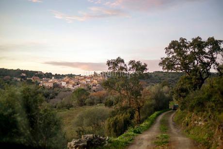 日没時に照らし出されるヨーロッパの小さな村と田舎道の写真素材 [FYI03831940]