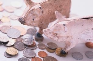 硬貨とブタの貯金箱の写真素材 [FYI03832009]