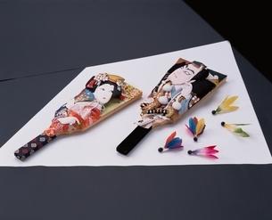 2枚の羽子板と複数の羽根の写真素材 [FYI03832036]
