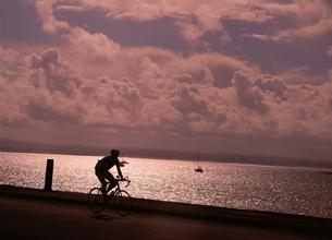海岸通りを走るロードバイクのシルエット(ニュージーランド・オークランド)の写真素材 [FYI03832531]