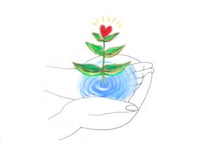 手のひらで咲くハートのイラスト素材 [FYI03833302]