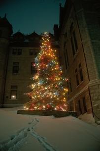 クリスマスツリー ケベック カナダの写真素材 [FYI03833317]
