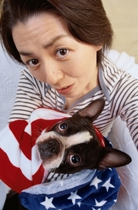 犬(ボストンテリア)を抱っこする日本人中高年女性の写真素材 [FYI03833362]