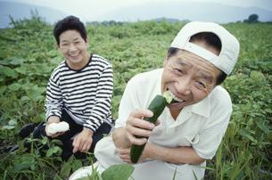 キュウリを食べる日本人中高年夫婦の写真素材 [FYI03833403]
