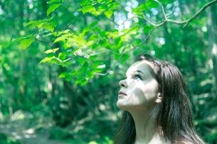 森の中の女性の写真素材 [FYI03833630]