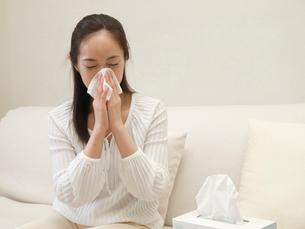 鼻をかむ女性の写真素材 [FYI03834264]