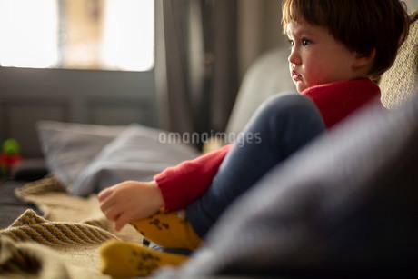 ソファーに座ってテレビを見る赤いセーターを着た幼児の写真素材 [FYI03834425]