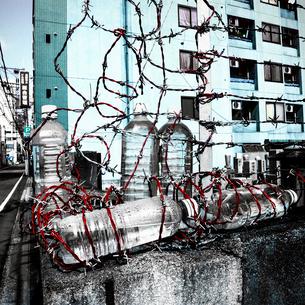 鉄線とペットボトルの写真素材 [FYI03834430]
