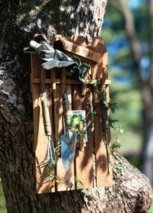 木に掛けたガーデングッズの写真素材 [FYI03834895]
