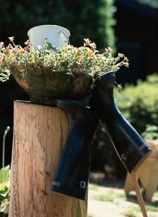 長靴と鉢植えの写真素材 [FYI03834901]