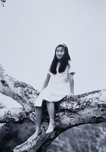 木登りをしている日本人の女の子の写真素材 [FYI03835229]