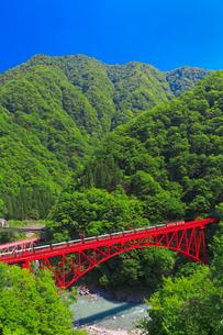新緑の黒部渓谷鉄道 トロッコ列車の写真素材 [FYI03835677]