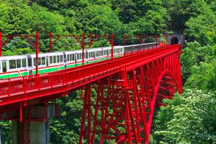 新緑の黒部渓谷鉄道 トロッコ列車の写真素材 [FYI03835693]